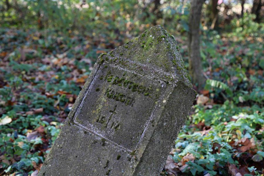 Bechcice cmentarz (10)