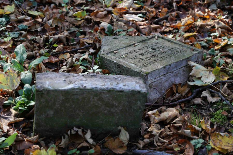 Bechcice cmentarz (12)