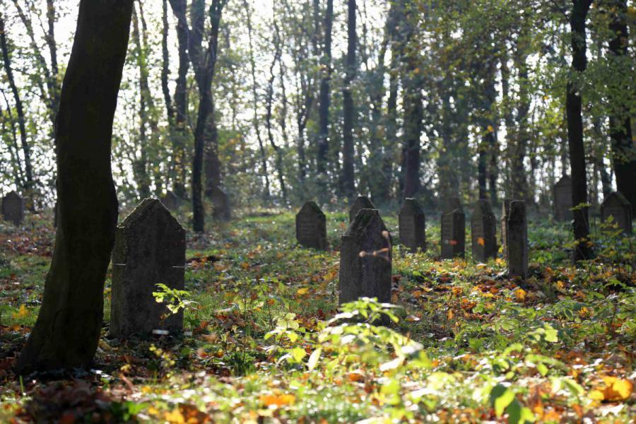 Bechcice cmentarz (6)